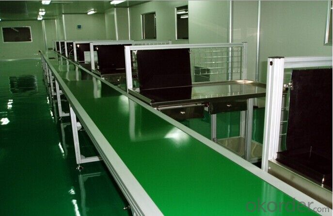 PVC/PU Food Conveyor Belt White Green Color Belt