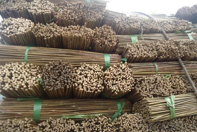 Natural Bamboo Tonkin Sticks for Decoration