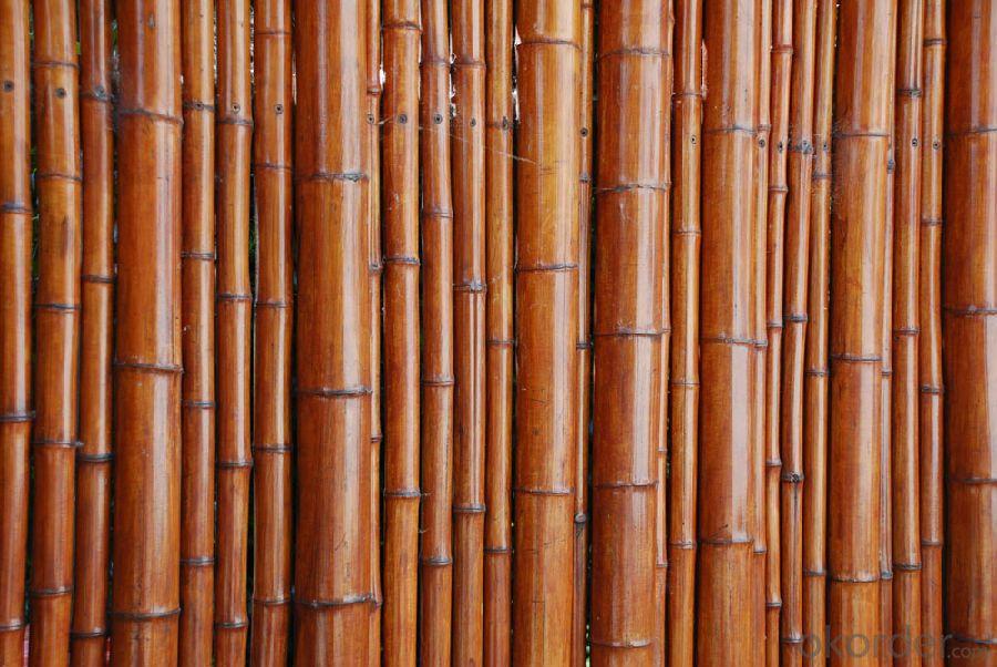 Bamboo Pole Natural Bamboo Sticks Pole Natural