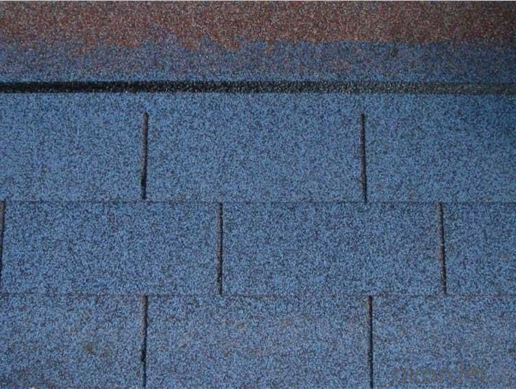 Asphalt Roofing Shingle /Insulated Panels for Roofing