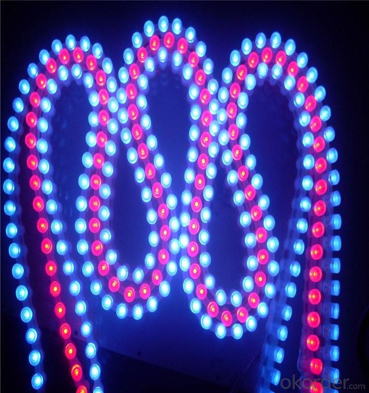 5050 smd Led Strip Lights