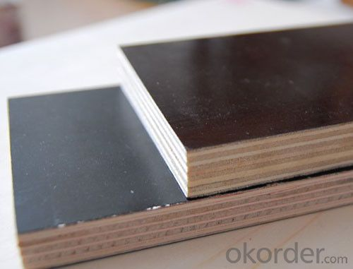 Black/Brown/Red Film Faced Plywood for Construction