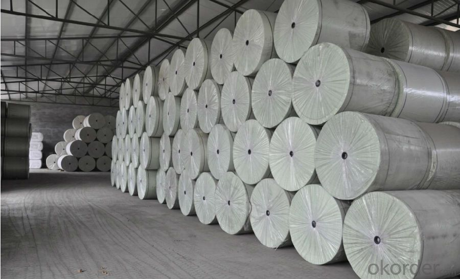 Long Fiber Polyester Mat for APP/SBS Membrane Production