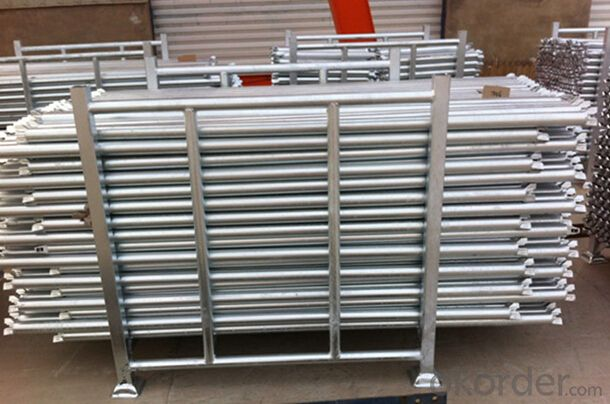 Ring-lock Scaffolding Enjoying with Outstanding Perforances