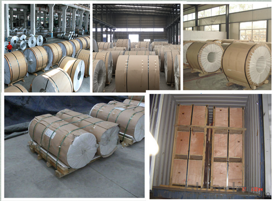Chiina Supplier 304 Hot Rolled Stainless Steel Coil, Stainless Steel Coil for Building Material