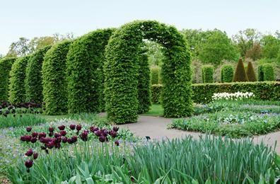 Economy Garden / Landscape Artificial Grass in China
