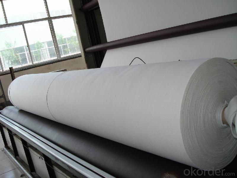 Filament Non-woven Geotextile for Drainage Function