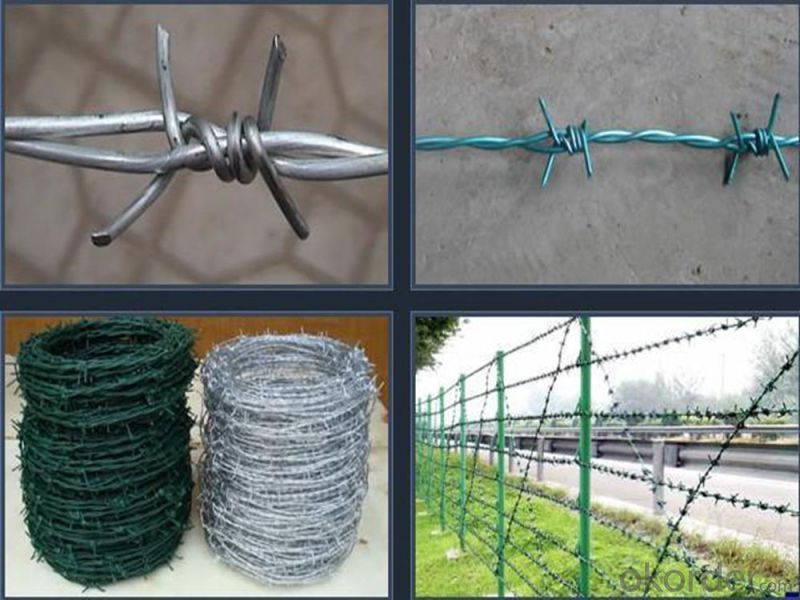 High Quality Hot DIP Galvanized Barbed Wire for Sale