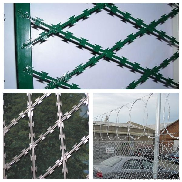 Hot Sale Razor Wire /Best Price Razor Wire/Single Loop Razor Wire