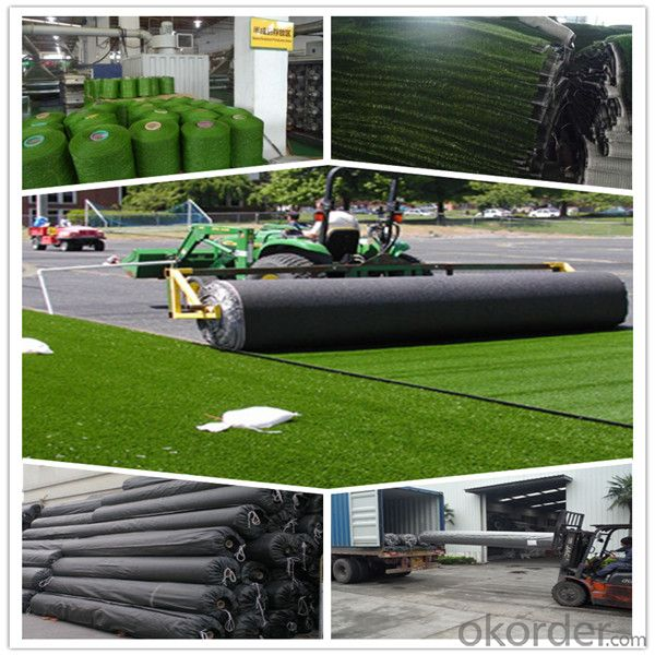 Sports Artificial Grass Turf FIFA Approved in 2015 New Design