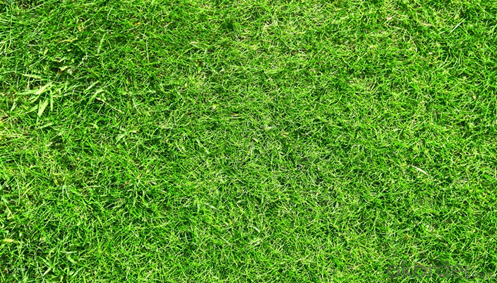 FIFA Approved Cheap Soccer Artificial Grass