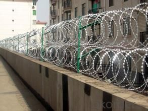 ISO Factory Razor Wire Fence/Razor Barbed Wire