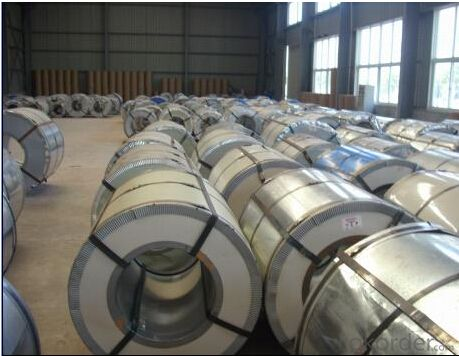 Good Galvanized Steel Coil from China with Best Price