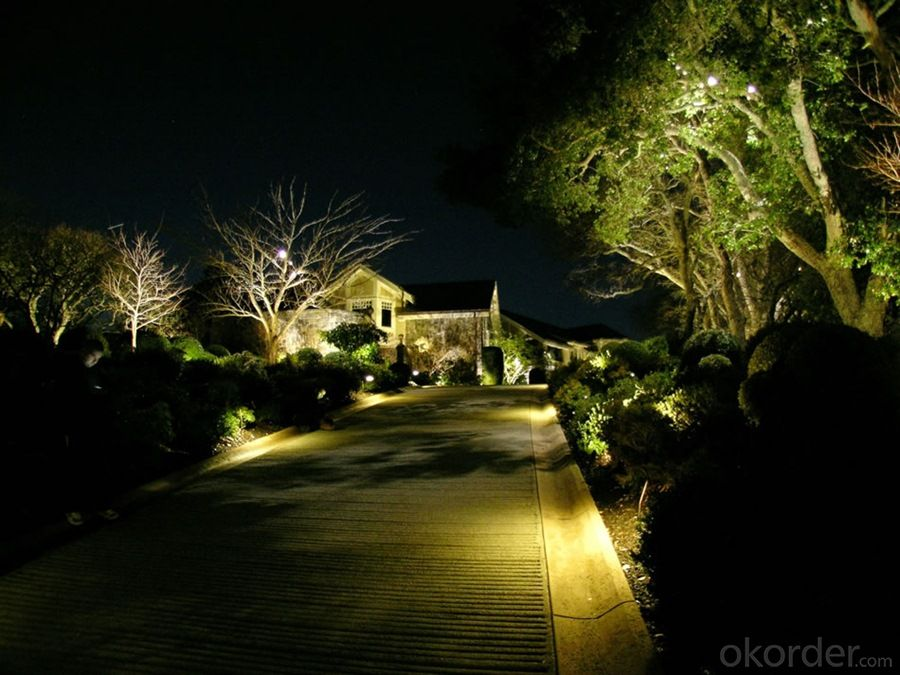 LED Lights IP65 2W Outdoor Decorative Garden for Landscape China