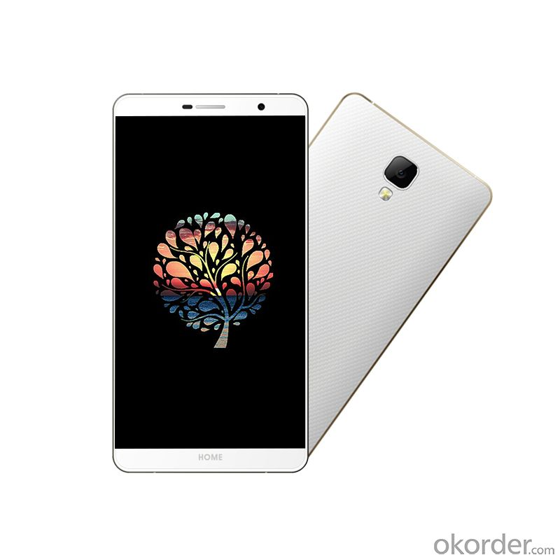 5.5 Inch HD Android 4.4 Dual-SIM 4G Smartphone