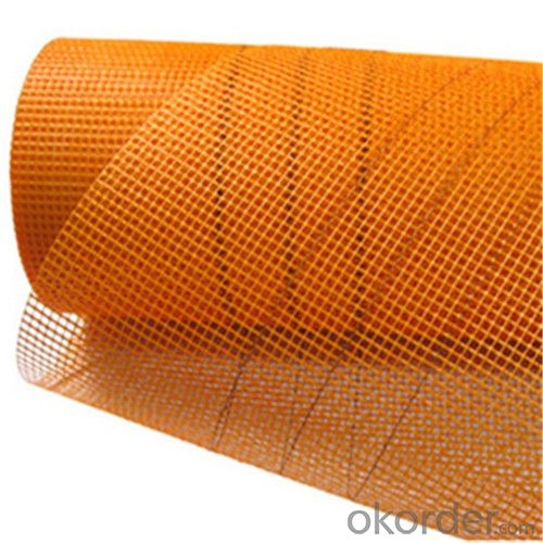Coated Alikali-Resistent Fiberglass Mesh Cloth High Quality 95g/m2 6*6/Inch