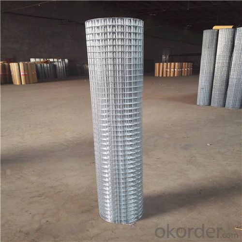 Hot Dipped Galvanized Welded Wire Mesh in Roll