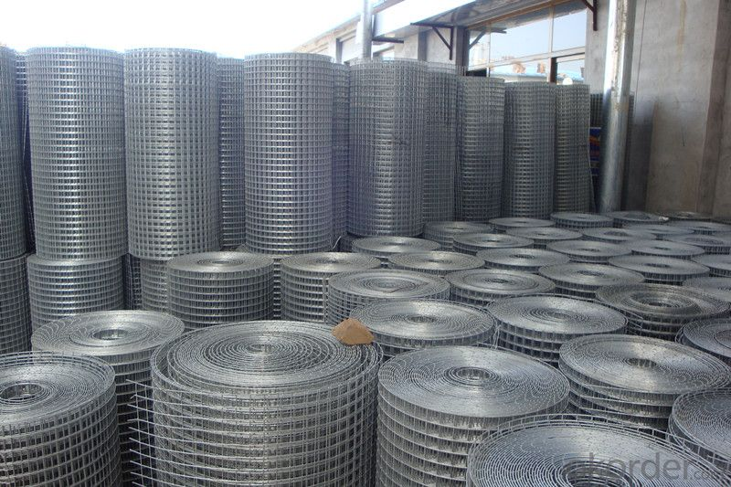 High Quality Welded Wire Mesh in Low Price
