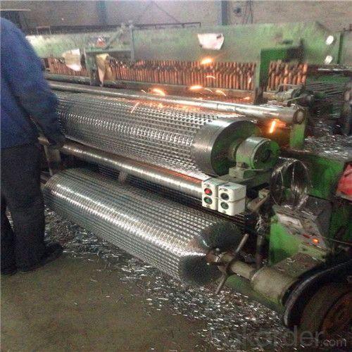 China 3/8 Inch Galvanized Welded Wire Mesh