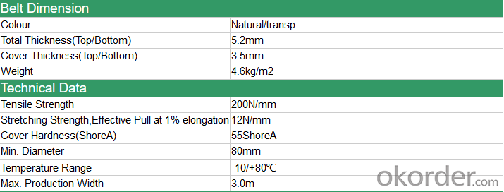 Grass PVC Conveyor Belt Rough Top PVC Conveyor Belt used in Beer Industry