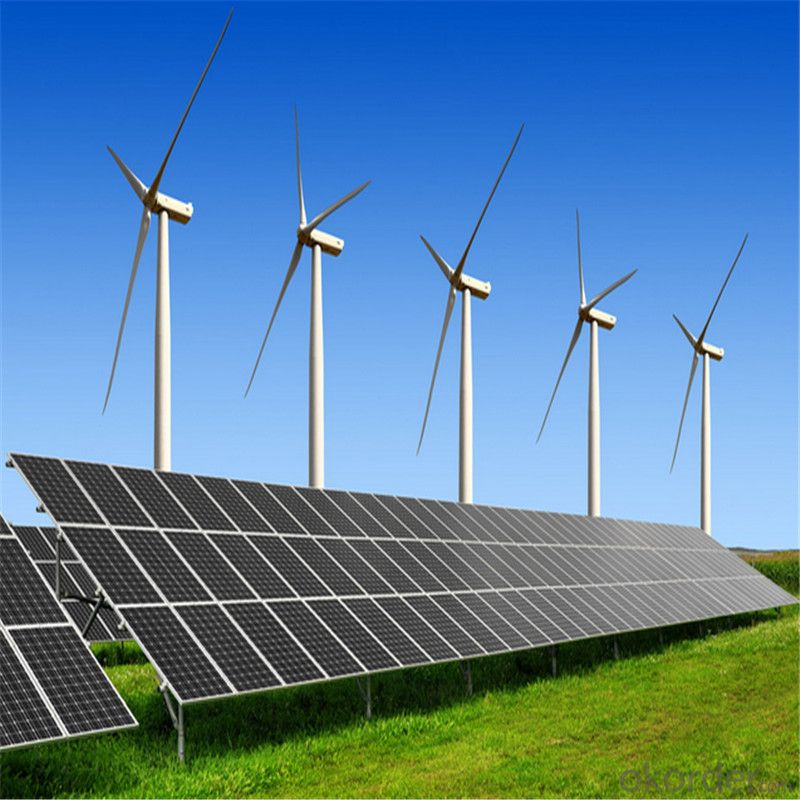 30 Watt Photovoltaic Poly Solar Panels