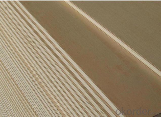 Furniture Grade Baltic Russian Birch Plywood