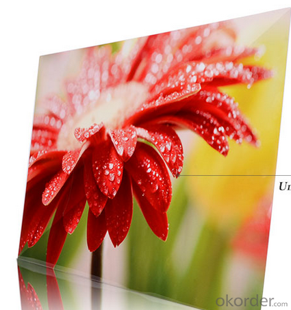 HD Aluminium Metal Art Pictures Print on HD Aluminium Metal Panel
