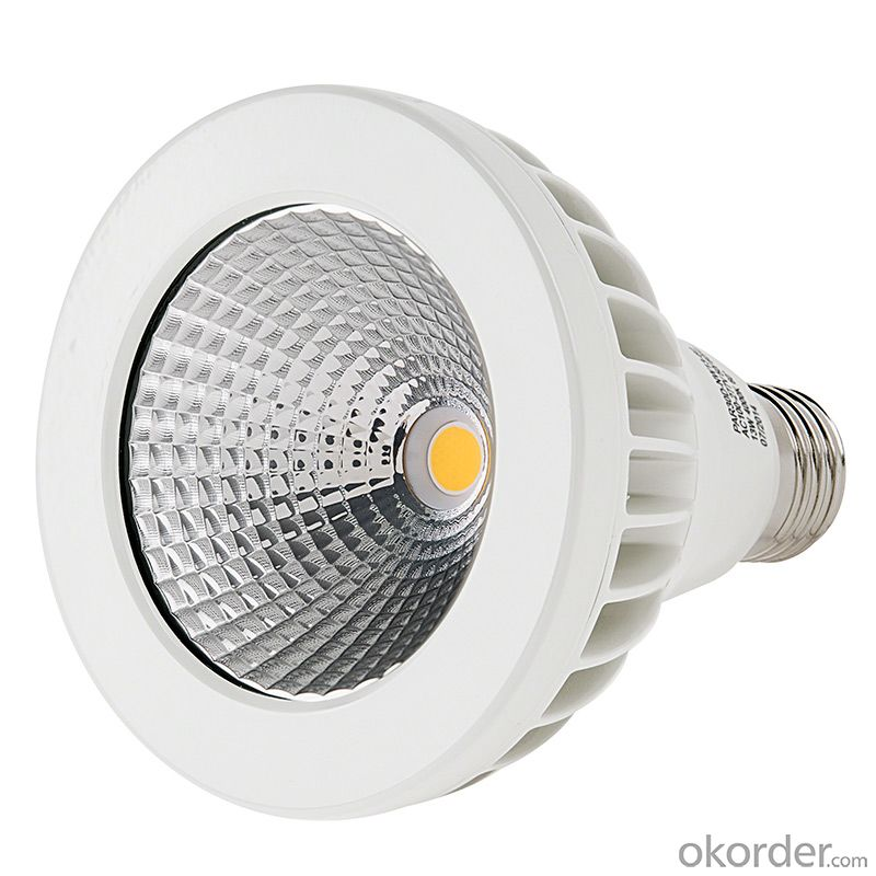 6W GU10/E27 COB Led PAR20 Led Spot Light