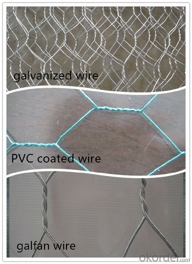 Galvanized Hexagonal Wire Mesh 25mm In High Quality