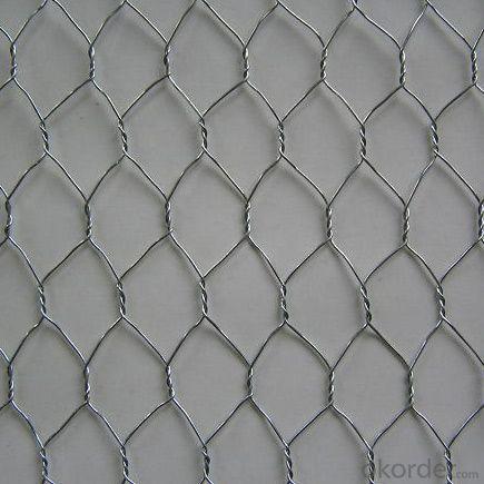 Hot Sale Low Price Galvanized Hexagonal Wire Mesh