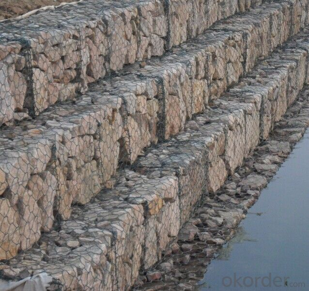Hexagonal Gabion Wire Mesh PVC Coating in High Quality