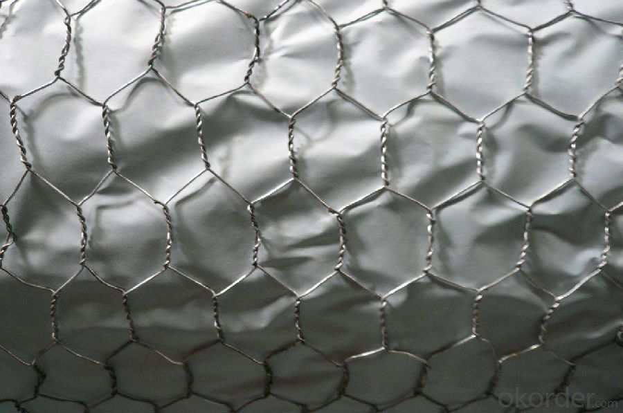 Hexagonal Wire Mesh for Window Protecting Hot Sale And Low Price