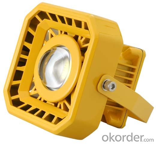 30 to 120W LED Explosion Proof Flood Light