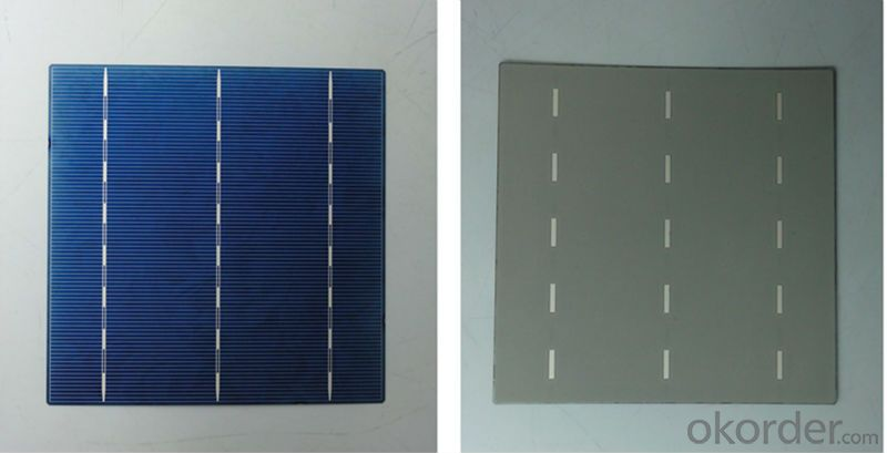 Solar Cell High Quality  A Grade Cell Polyrystalline 5v 16.4%