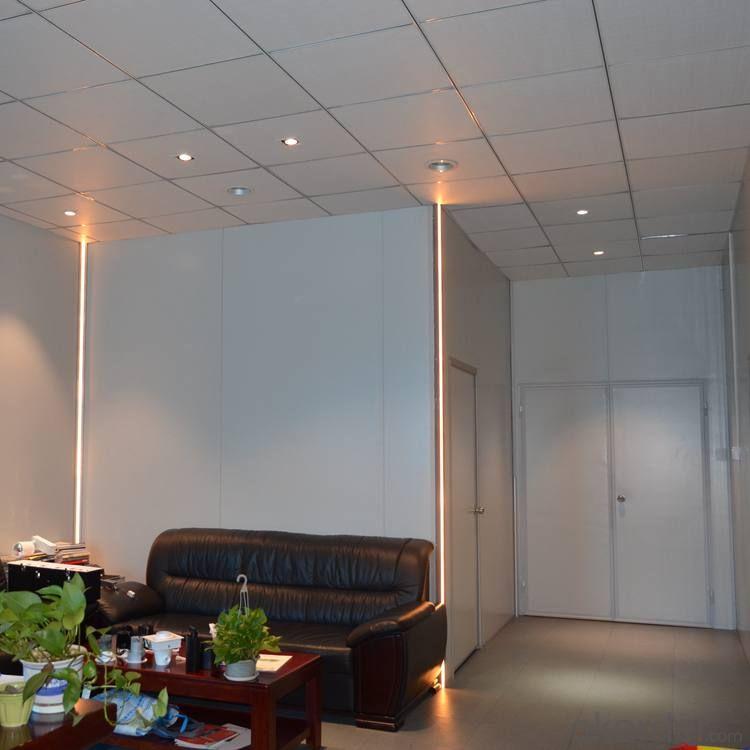 Alumunum Alloy LED Linear light with Led Strip 2835