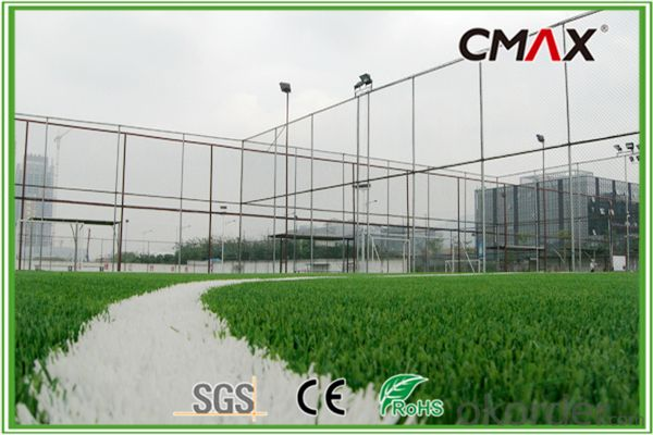 Football Field 50mm Height Straight/Curly Yarn Artificial Grass
