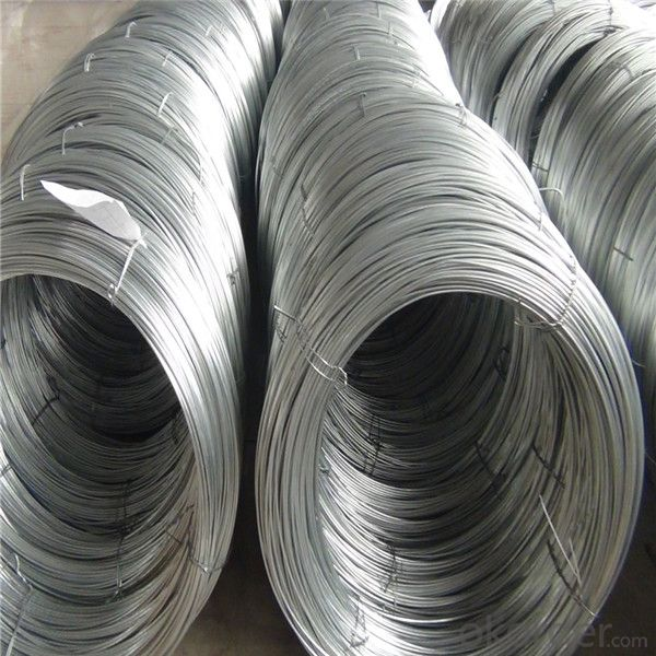 Chq Carbon Steel Wire SAE1022 for Screw Making (SAE1022)