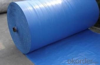 PE PP Woven Tarpaulin with Best Price Anti-UV