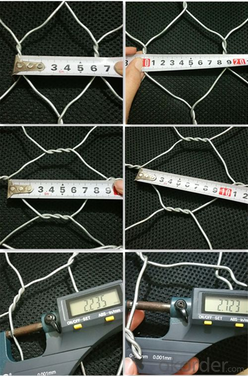 Hot Sale Low Price Hexagonal Wire Mesh/Gabion