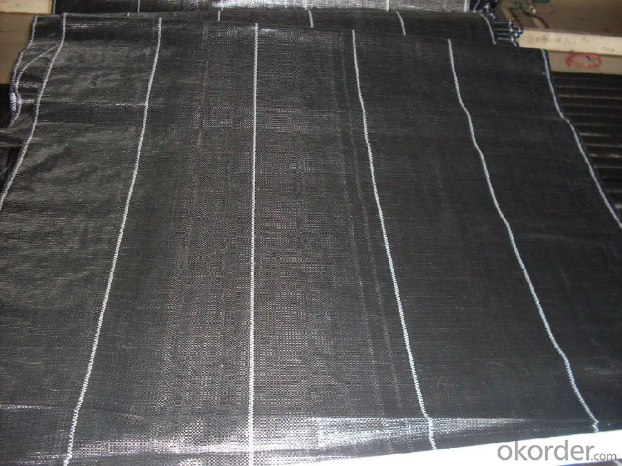PP Woven Fabric/ Groundcover/ Weed Barrier Fabric for Garden