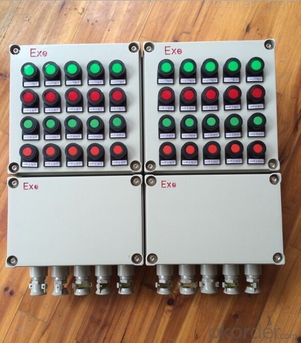 Explosion proof electric power distribution box