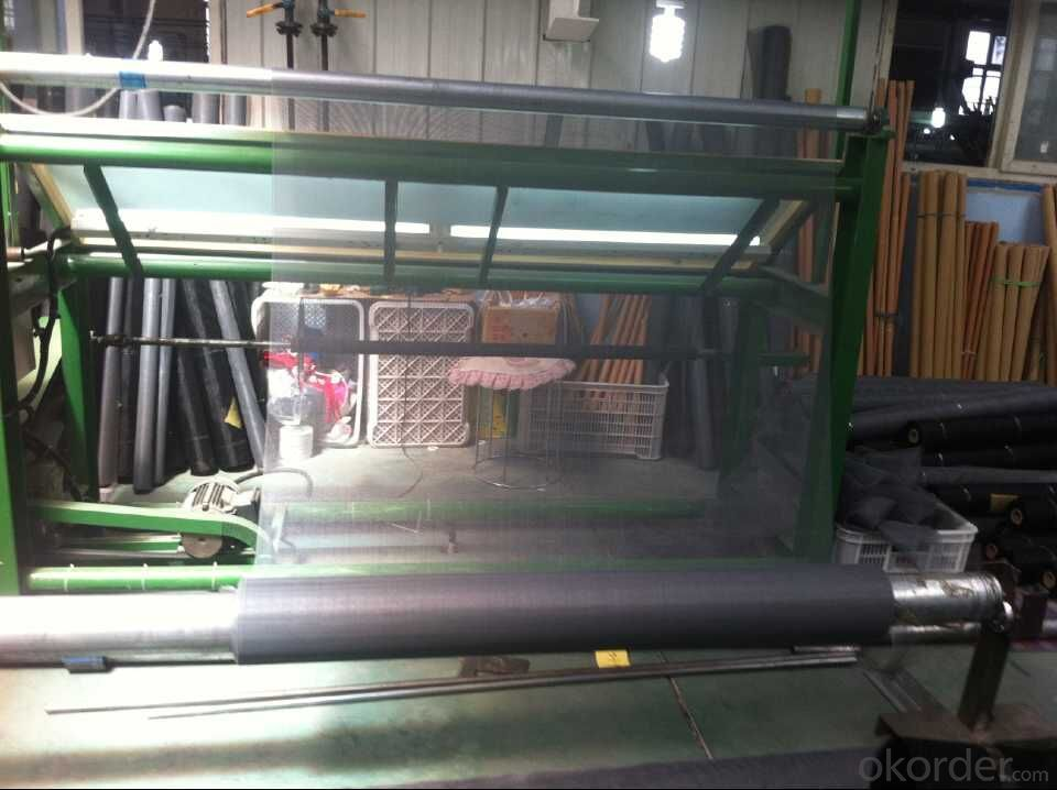 Supply All Styles Fly Screen Mesh for Door & Window