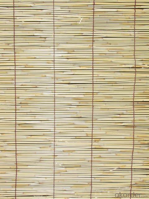 Natural Light Reed Cane Fence Panel Screening