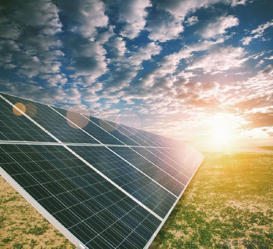 CNBM Polycrystalline Silicon 250W Solar Module