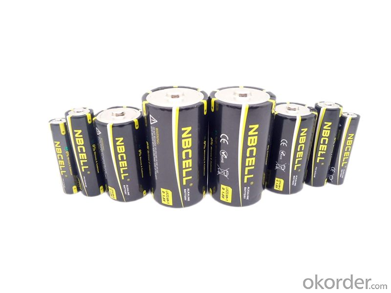Alkaline Battery 1.5V LR20 D AM-1 (NBCELL brand or OEM)