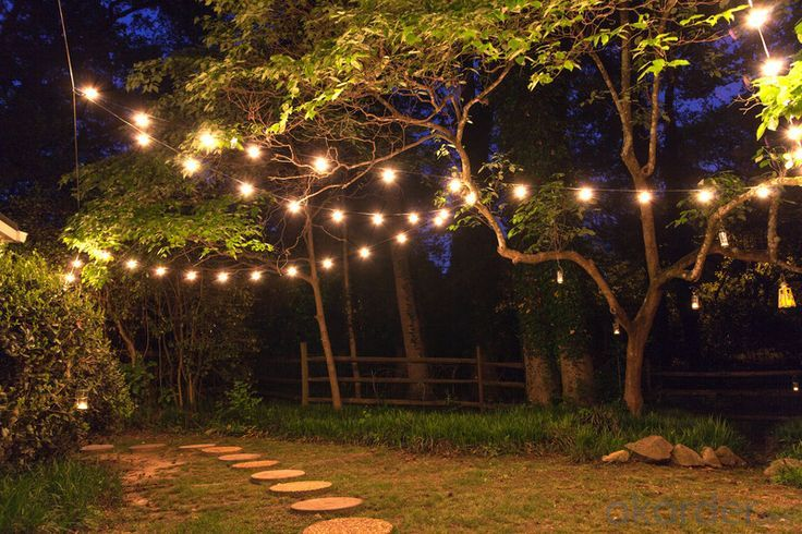 E12 String Globe Lights For Outdoor Garden Use with 110V Voltage G40 Edsion