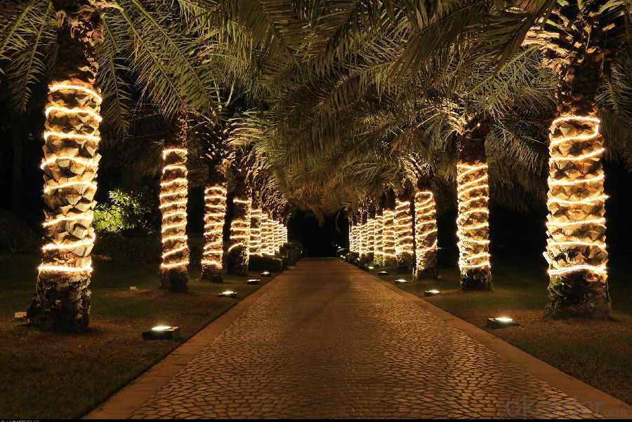 Sakura Solar Light String with 5 Meters 20 Lights for Christmas and Party Decoration.