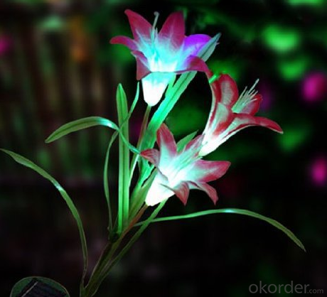 Solar Powered in Amusement Park Lily Flower Lawn Garden LED Light Outdoor Landscape Lamp Lights