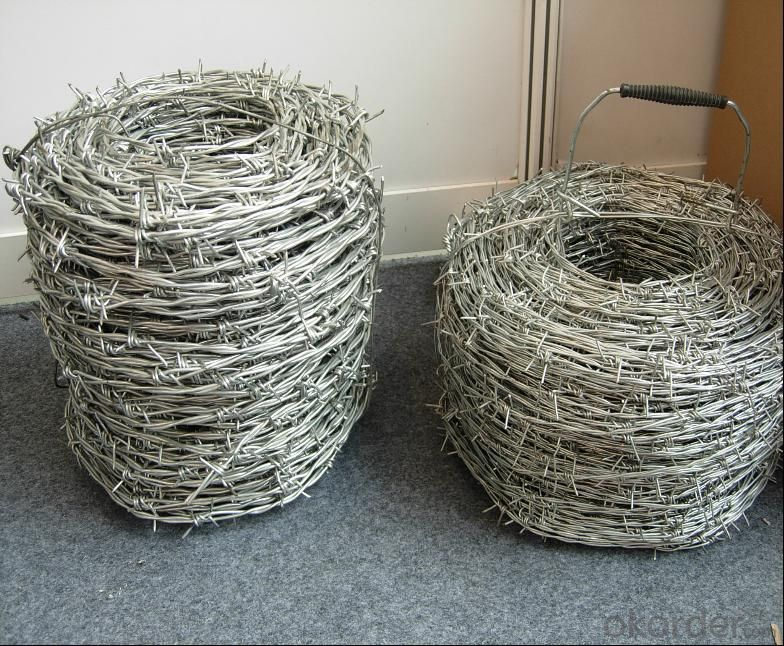 Anti Climb Wall Spike Barbed Wire for Sale (ISO9001)