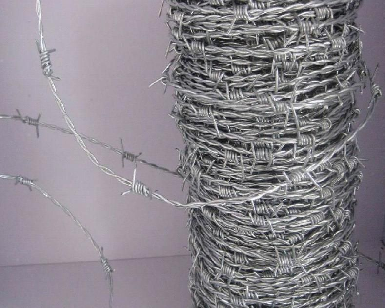 Bwg14X14, 16X16 Double Strand Galvanized Barbe Wire/Twist Barbed Wire